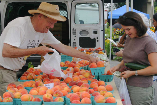 Bill Harris of Grand Fruit Champion Harris Orchard selling at RPFM