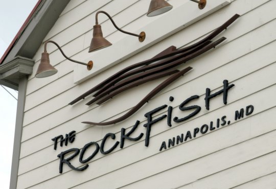 photo courtesy of: The Rockfish